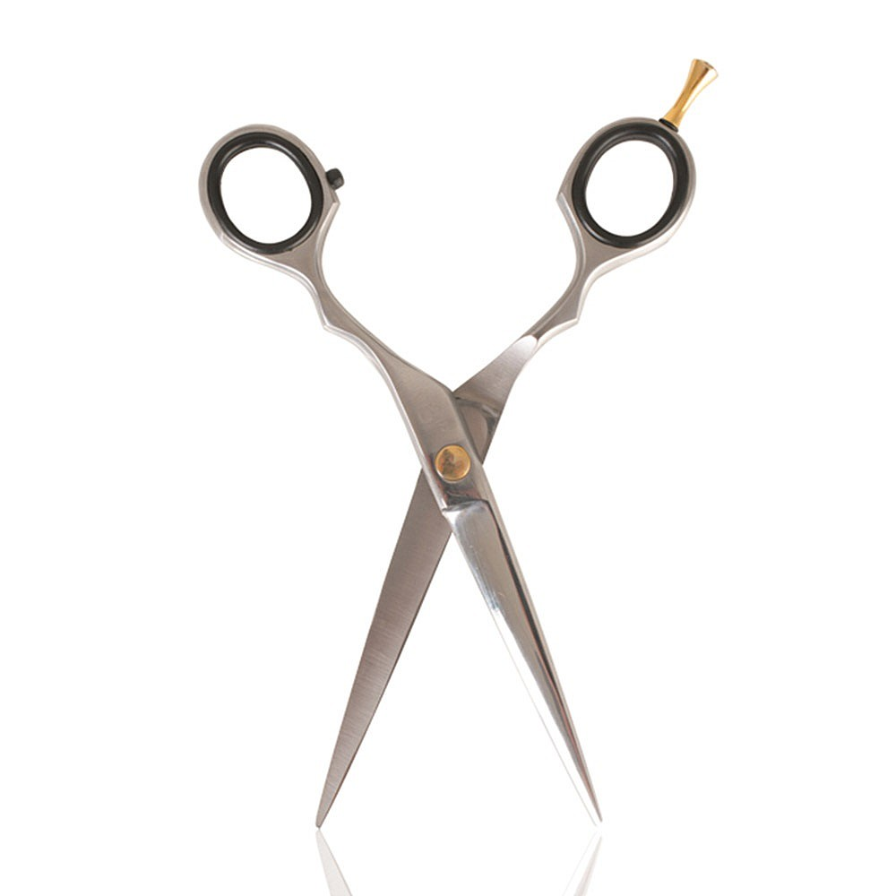 Salon Services S1 Scissors 6 Inch